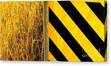 Weeds Versus Man Canvas Print by Joe Jake Pratt
