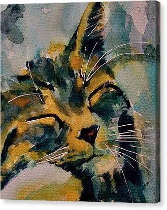 Weeeeeee Sleepee Canvas Print by Paul Lovering