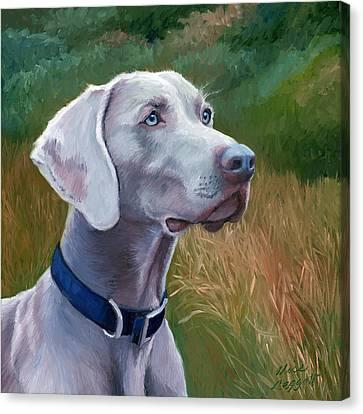 Weimaraner Dog Canvas Print by Alice Leggett