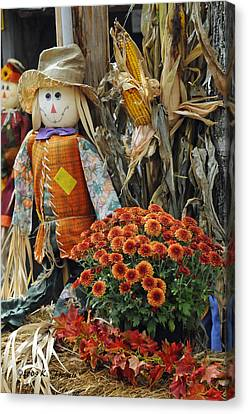 Welcome Fall Canvas Print by Kenny Francis