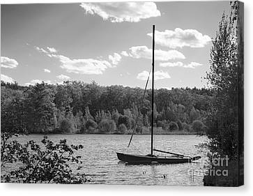 Wellesley College Waban Lake Canvas Print by University Icons
