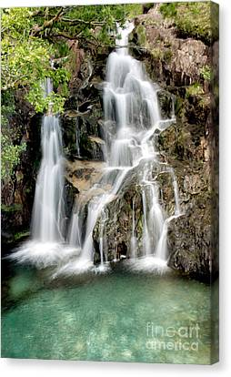 Welsh Waterfall Canvas Print by Adrian Evans