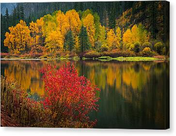 Wenatchee River Reflections Canvas Print by Dan Mihai