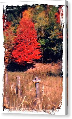 West Virginia Country Roads - Autumn Colorfest No. 1 - Germany Valley Pendleton County Wv Canvas Print by Michael Mazaika
