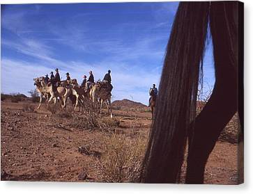 Western Cape Desert South Africa 1996 Canvas Print by Rolf Ashby