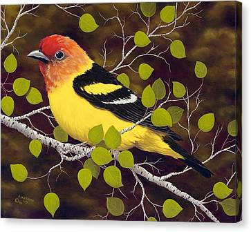 Western Tanager Canvas Print by Rick Bainbridge