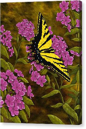 Western Tiger Swallowtail And Evening Phlox Canvas Print by Rick Bainbridge