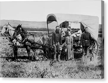 Westward Family In Covered Wagon C. 1886 Canvas Print by Daniel Hagerman