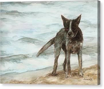Wet Dog - Cattle Dog Canvas Print by Meagan  Visser