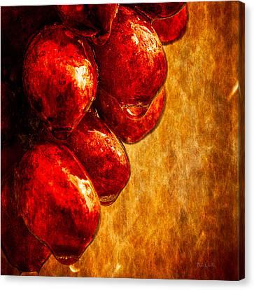 Wet Grapes Three Canvas Print by Bob Orsillo