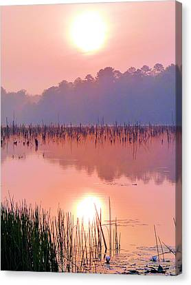 Wetlands Sunrise Canvas Print by JC Findley