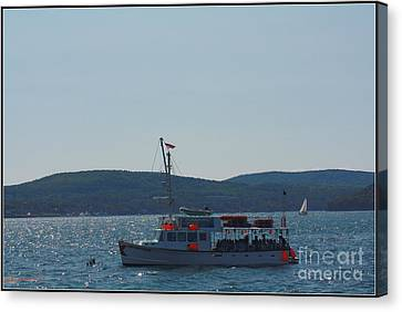 Whale Watching At Bar Harbor Canvas Print by Dora Sofia Caputo Photographic Art and Design