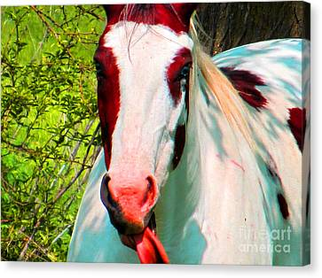 What Does It Mean ? Canvas Print by Tina M Wenger