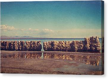 What Used To Be Canvas Print by Laurie Search