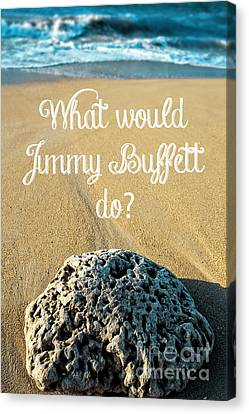 What Would Jimmy Buffett Do Canvas Print by Edward Fielding