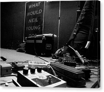 What Would Neil Young Do? Canvas Print by Daniel Schubarth