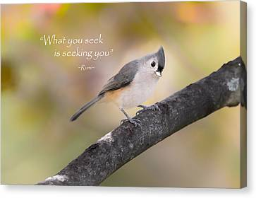 What You Seek Canvas Print by Bill Wakeley