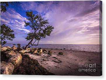 What's Beyond Canvas Print by Marvin Spates