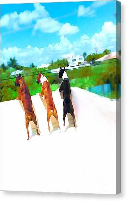 What's Out There  Canvas Print by Javier Correa