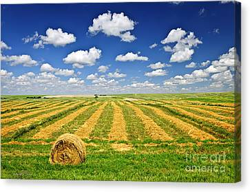 Wheat Farm Field And Hay Bales At Harvest In Saskatchewan Canvas Print by Elena Elisseeva