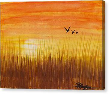 Wheatfield At Sunset Canvas Print by Darren Robinson