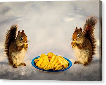 When You Lose Your Nuts There Is Always Chips Canvas Print by Bob Orsillo
