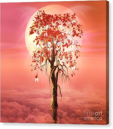 Where Angels Bloom Canvas Print by John Edwards