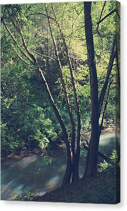 Where It's Shady Canvas Print by Laurie Search