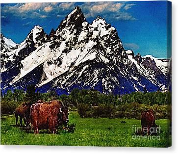 Where The Buffalo Roam Canvas Print by Bob and Nadine Johnston
