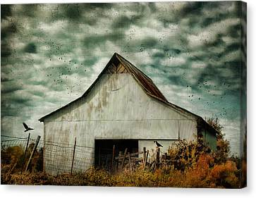 Where The Crows Roost In Autumn Canvas Print by Jai Johnson