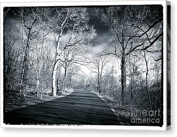 Where The Road Leads Canvas Print by John Rizzuto
