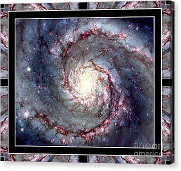 Whirlpool Galaxy Self Framed Canvas Print by Rose Santuci-Sofranko