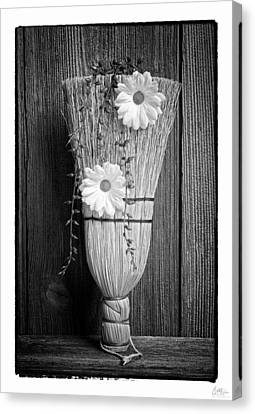 Whisk Bloom - Art Unexpected Canvas Print by Tom Mc Nemar