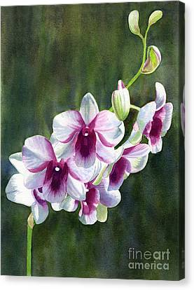 White And Red Violet Orchid Canvas Print by Sharon Freeman