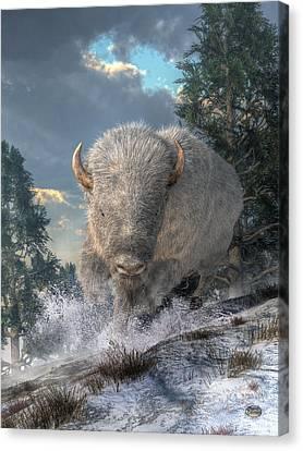 White Bison Canvas Print by Daniel Eskridge