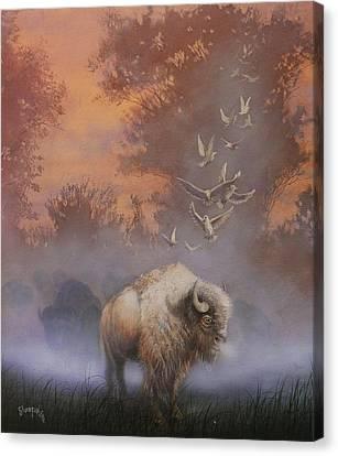 White Buffalo Spirit Canvas Print by Tom Shropshire