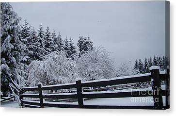 White Christmas Canvas Print by Beverly Guilliams