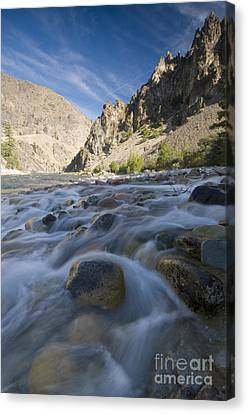 White Creek And Middle Fork Salmon River Canvas Print by William H. Mullins