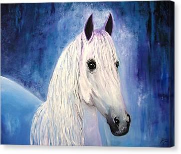 White Horse Canvas Print by Doris Cohen