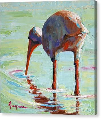 White Ibis  Everglades Bird  Canvas Print by Patricia Awapara