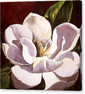 White Magnolia With Red Canvas Print by Alfred Ng