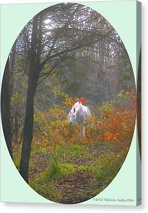 White Paso Fino Stallion Enjoys The Autumn Day Canvas Print by Patricia Keller