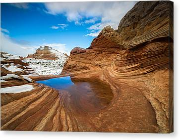 White Pocket Utah 2 Canvas Print by Larry Marshall
