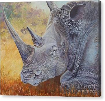 White Rhino Canvas Print by Caroline Street