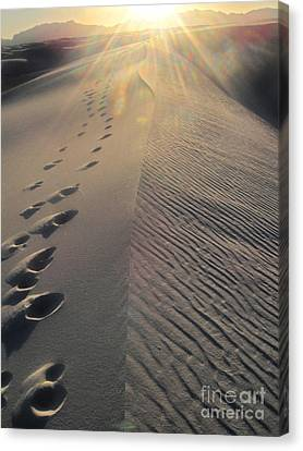 White Sands New Mexico Footsteps In The Sand Canvas Print by Gregory Dyer