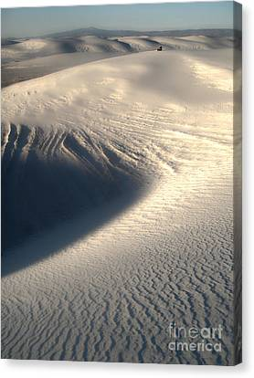 White Sands New Mexico Sand Dunes Canvas Print by Gregory Dyer