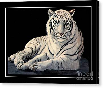 White Tiger Canvas Print by DiDi Higginbotham