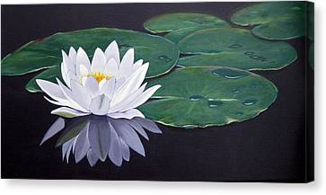 White Water Lilly Canvas Print by Birgit Coath