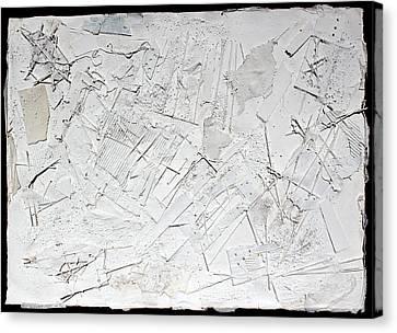 White Web Collage 6 Canvas Print by Hari Thomas