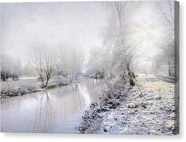 White Winter Canvas Print by Svetlana Sewell